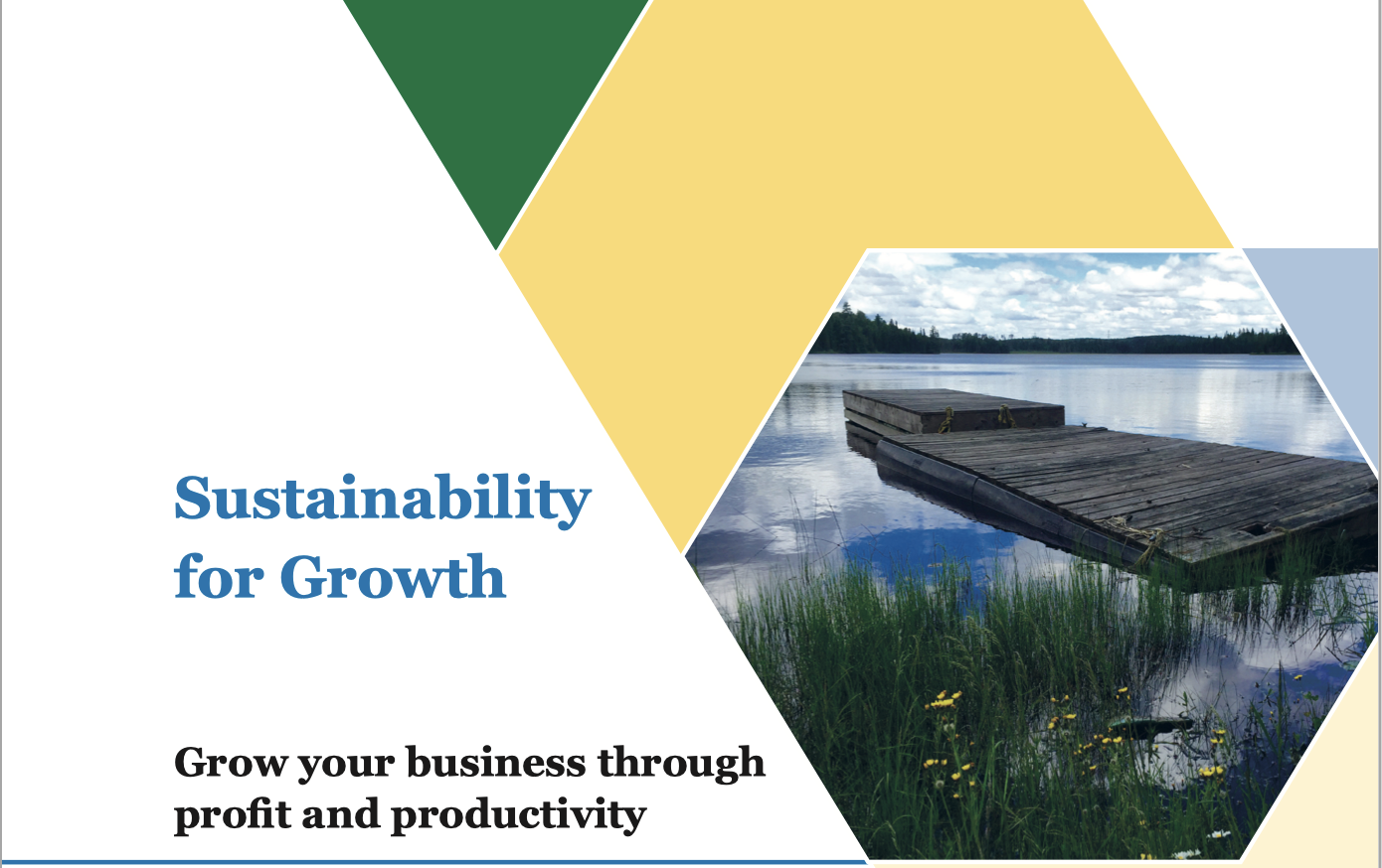 Sustainability for Growth brochure
